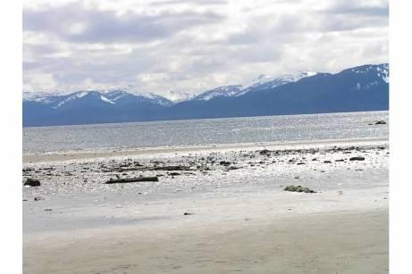 Alaska sun